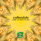 Under an Electric Sun by Callendula mp3 download