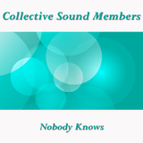 Nobody Knows by Collective Sound Members mp3 download