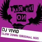 Slow Down by DJ Vivid mp3 download