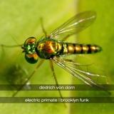 Electric Primate & Brooklyn Funk by Dedrich Von Dorn mp3 download