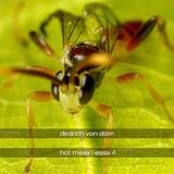 Hot Mess / Essa 4 by Dedrich Von Dorn mp3 download