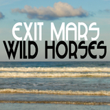 Wild Horses by Exit Mars mp3 download