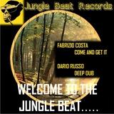 Welcome to the Jungle Beat by Fabrizio Costa & Dario Russo mp3 download