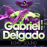 Echo Sound (Remix 2014) by Gabriel Delgado mp3 download