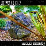 Another Big Stone/Off My Mind by Lektricks & R.D.S mp3 download