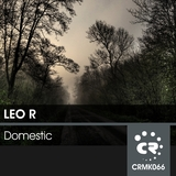 Domestic by Leo R mp3 download