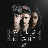 Wild for the Night by Matteo Santo & DJ Em feat. Melody Garcia mp3 download