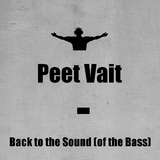 Back to the Sound (Of the Bass)  by Peet Vait mp3 download