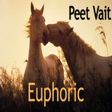 Euphoric by Peet Vait mp3 download