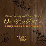 Our World Vol. 2 by Pepper Mashay & Clemens Rumpf mp3 download