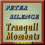 Tranquil Moments by Peter Silence mp3 download