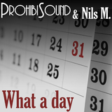 What a Day by Prohibisound & Nils M. mp3 download