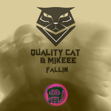 Fallin by Quality Cat & Mikeee mp3 download
