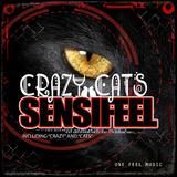 Crazy Cats by Sensifeel mp3 download