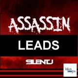 Assassin Leads by Silent J mp3 download