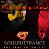 Flamenco Reggaeton, Vol. 1 by Soulfultrance the Real Producers mp3 download
