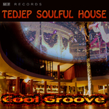 Cool Groove by Tedjep Soulful House mp3 download