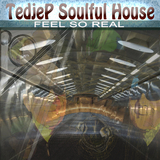 Feel so Real by Tedjep Soulful House mp3 download