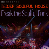 Freak the Soulful Funk by Tedjep Soulful House mp3 download