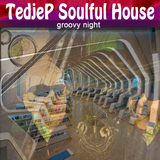 Groovy Night by Tedjep Soulful House mp3 download