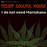 I Do Not Need Mariuhana by Tedjep Soulful House mp3 download