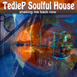 Shaking Me Back Now by Tedjep Soulful House mp3 download