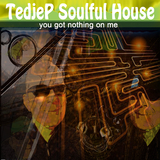 You Got Nothing On Me by Tedjep Soulful House mp3 download