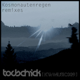 Kosmonautenregen Remixes by Todschick mp3 download