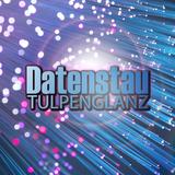 Datenstau by Tulpenglanz mp3 download