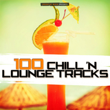 100 Chill 'n Lounge Tracks by Various Artists mp3 download