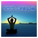 100 Unique Lounge & Relaxing Vibes by Various Artists mp3 download