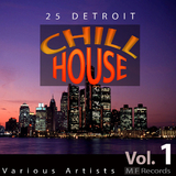 25 Detroit Chillhouse, Vol. 1 by Various Artists mp3 download