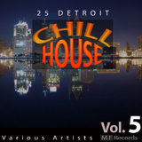25 Detroit Chillhouse, Vol. 5 by Various Artists mp3 download