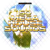 50 Mega House Sounds by Various Artists mp3 download