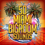 50 Miami Bigroom Sounds by Various Artists mp3 download