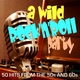Various Artists A Wild Rock 'n' Roll Party - 50 Hits from the 50s and 60s