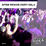 After Private Party, Vol.4 by Various Artists mp3 download
