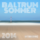 Baltrum Sommer 2014 by Various Artists mp3 download