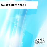 Banger Vibes Vol.11 by Various Artists mp3 download
