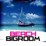 Beach Bigroom by Various Artists mp3 download