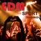 Everybody (Radio Version) by Mydca mp3 downloads