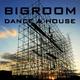 Various Artists Bigroom Dance & House