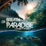 Breath of Paradise - Lounge & Ambient by Various Artists mp3 download