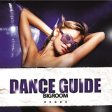 Dance Guide Bigroom by Various Artists mp3 download