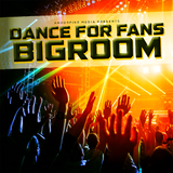 Dance for Fans Bigroom by Various Artists mp3 download