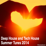 Deep House and Tech House Summer Tunes 2014 by Various Artists mp3 download
