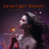 Drum & Bass Summer Collection 2012 by Various Artists mp3 download