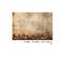Antrax (Bass line Mix) by David Blackman mp3 downloads