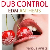 Dub Control EDM Anthems by Various Artists mp3 download