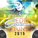 EDM Summer Tunes 2015 by Various Artists mp3 download